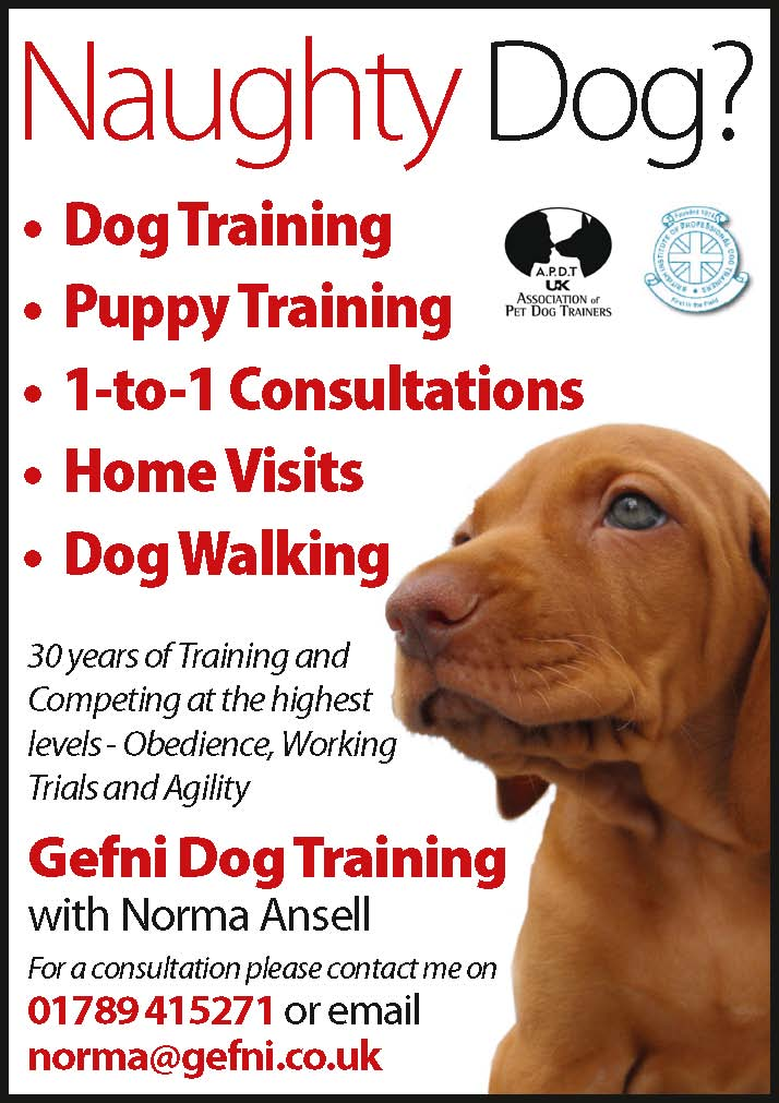 gefni dog training - stratford upon avon